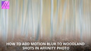 How to add surreal motion blur to woodland photography in Affinity Photo